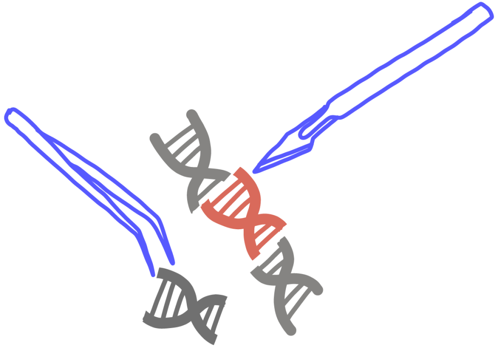 A scalpel and tweezers picking at a DNA double helix